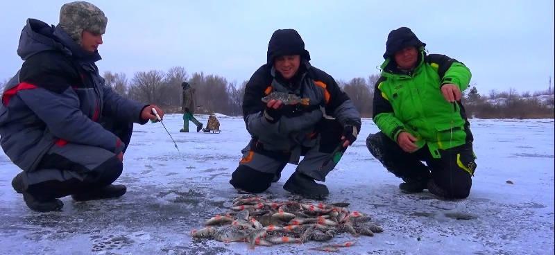 Ловля окуня зимой на Днепре