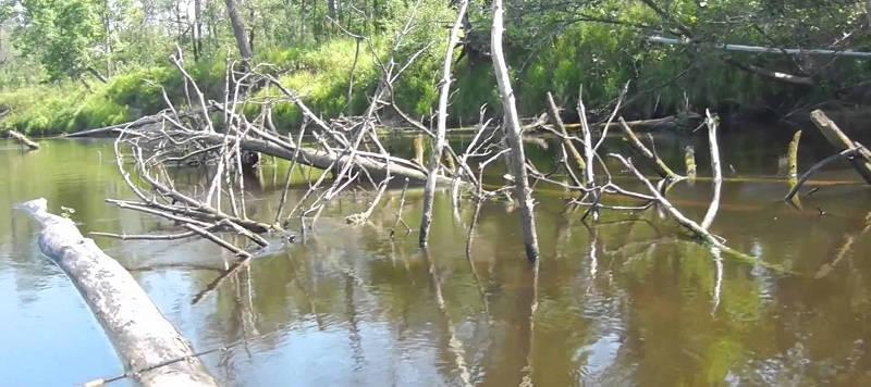 Ловля щуки в запрессованных водоёмах