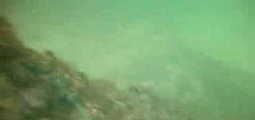 Подводная охота зимой на р. Дон