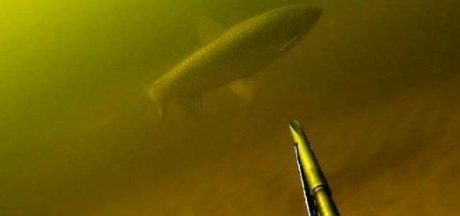 Подводная охота на Амуре