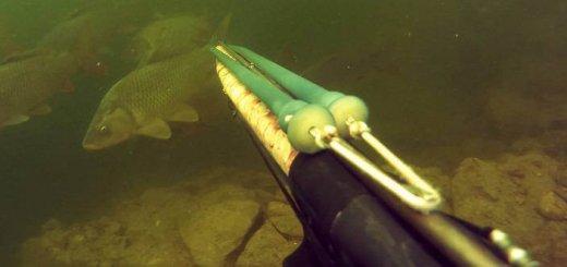 Подводная охота на Красноярском водохранилище