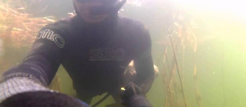 Подводная охота на Волге