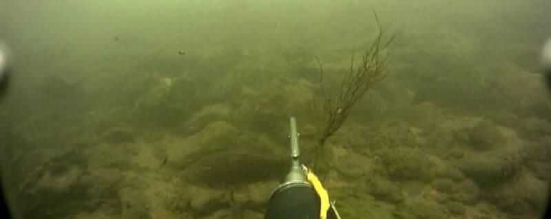 Подводная охота на зимней реке