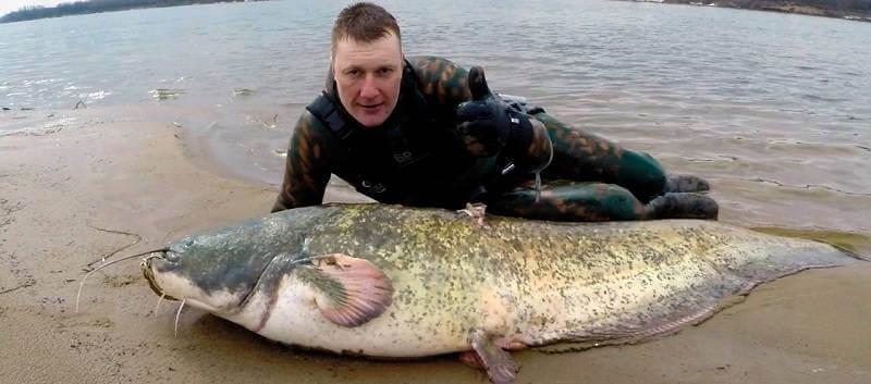 Подводная охота в марте на сома