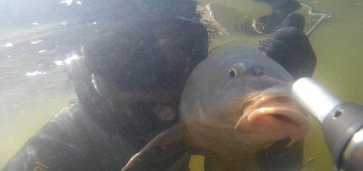 Подводная охота в феврале