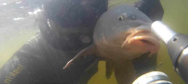 Весенняя подводная охота в Волгограде