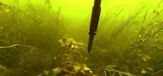 Подводная охота на р. Волга