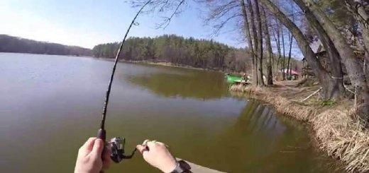 Рыбалка на озере Трофейное
