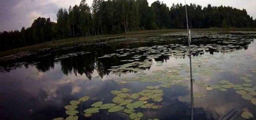 Рыбалка на озере Велье
