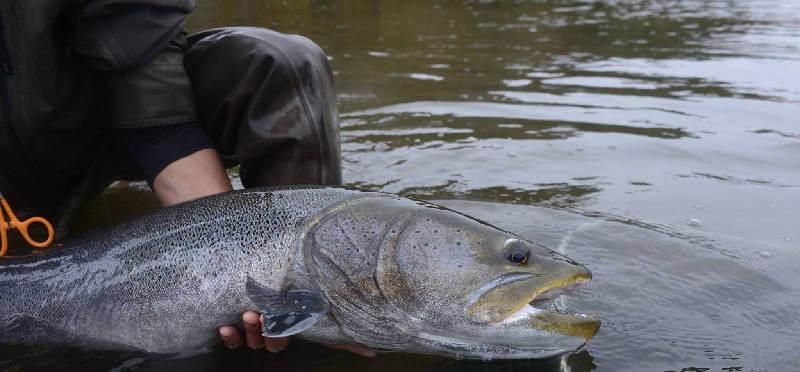 Рыбалка за границей