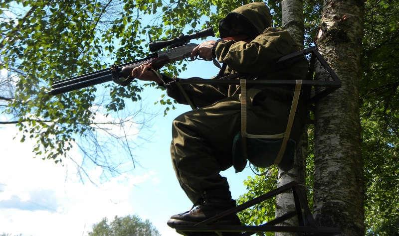 Охота с лабаза