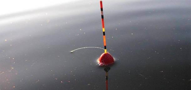 Поплавочная рыбалка летом