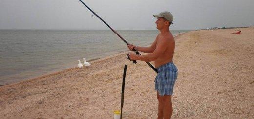 Ловля пеленгаса на Азовском море
