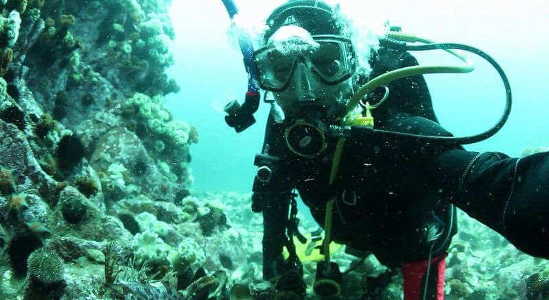 Подводная охота на Японском море