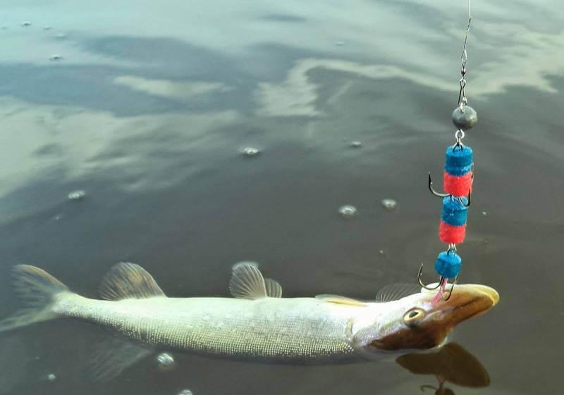 Условия рыбалки