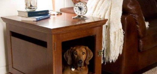 Домики для собаки