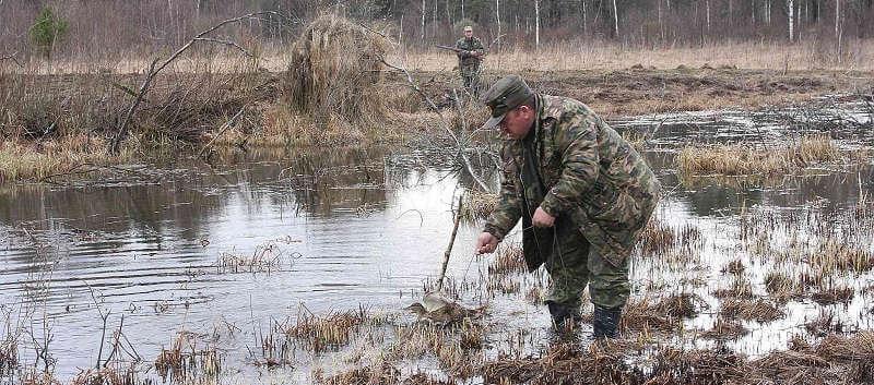 Бесплатна ли охота