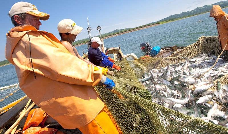 Российская рыбная промышленность