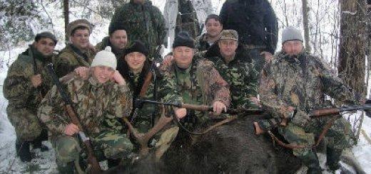 Нормы добычи лося