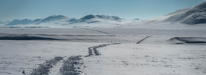 Тундра и зона льда