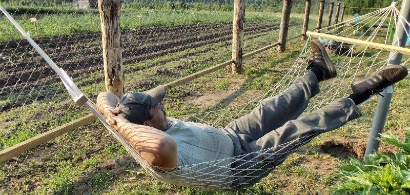 Отдых на даче