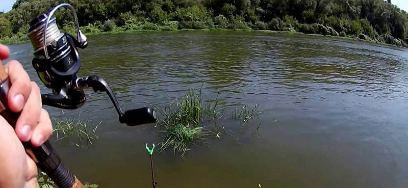 Рыбалка летняя на реке Дон