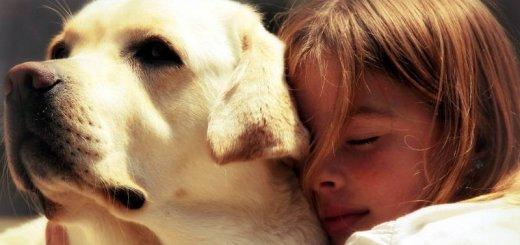 Если ребенок просит купить собаку