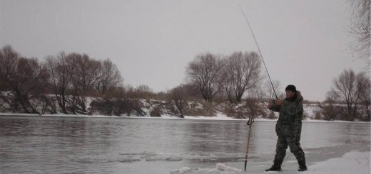 Рыбалка зимняя на реке Дон
