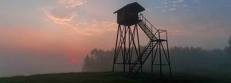 Охотхозяйство Брестской области