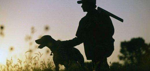 Правила и сроки охоты