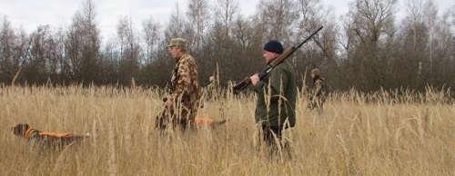 Коллективная охота на фазана