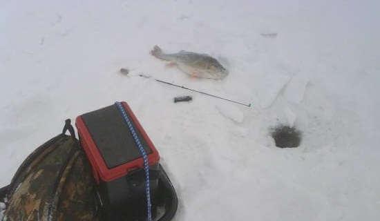 Как ловить на балду зимой