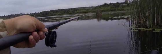 Видео ловли карася на мормышку летом