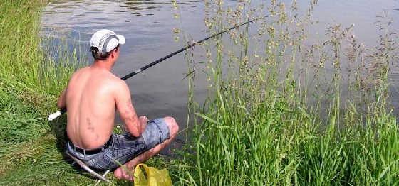 Видео ловли карася на поплавочную удочку