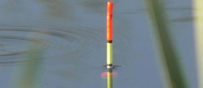 поплавочная ловля в октябре