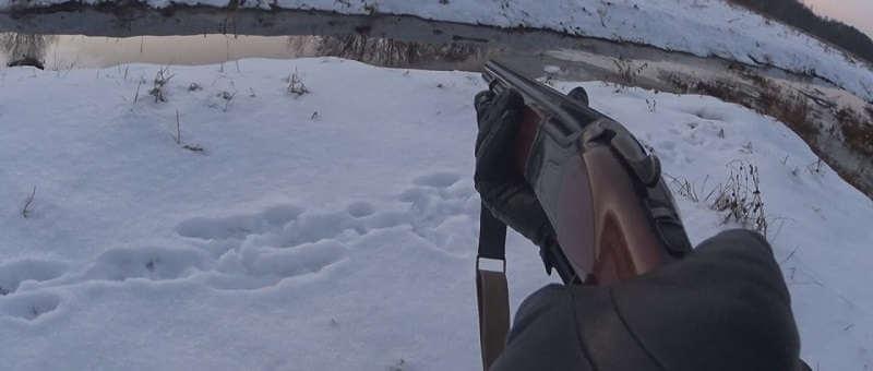 Охота на бобра зимой