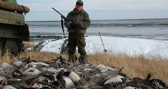 Охота на гусей в Якутии видео