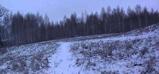 Охота на зайца по первому снегу