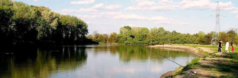 Ловля сома на реке Кубань