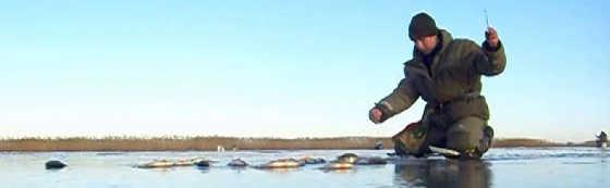 Видео рыбалки по первому льду