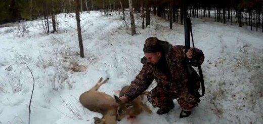 Зимняя охота на козу в Сибири