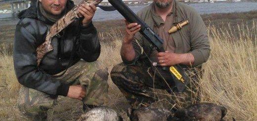 Почему охота интересна для многих людей?