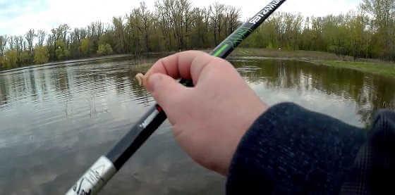 Осенняя ловля белой рыбы на фидер