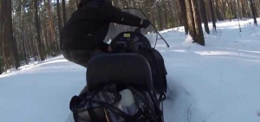 Охота на снегоходе Тайга