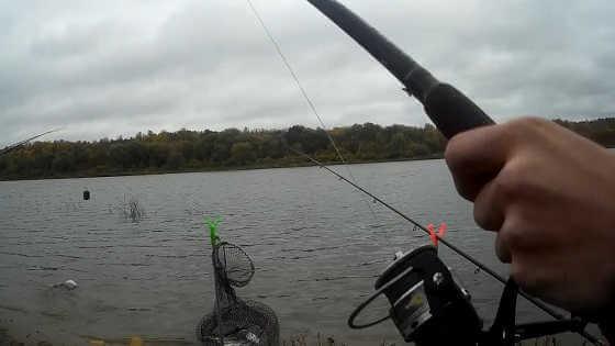 Осенняя ловля на фидер