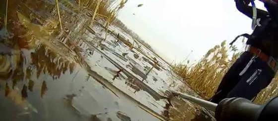 Подводная охота 31 декабря