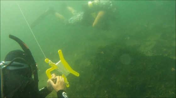 Январская подводная охота видео
