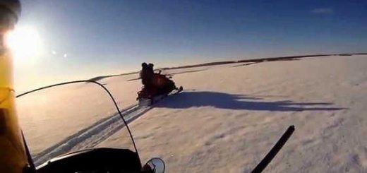 Зимняя охота на волков в Казахстане
