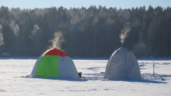 Ловля подлещика зимой в палатке