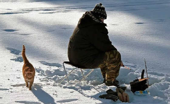 Ловля сомов зимой видео